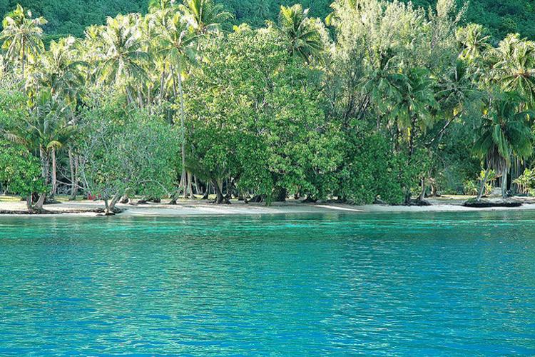 http://tahitivoileetlagon.com/wp-content/uploads/2014/10/MOOREA_10.jpg