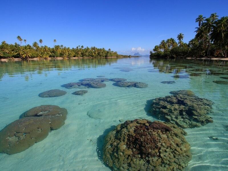 http://tahitivoileetlagon.com/wp-content/uploads/2015/10/ISLV02.jpg