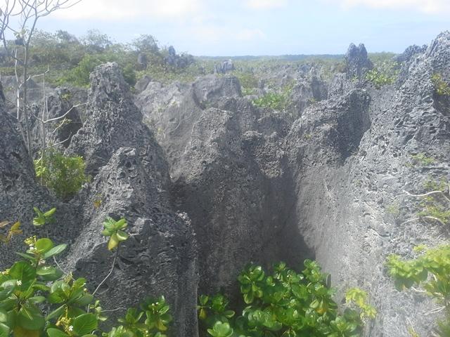 http://tahitivoileetlagon.com/wp-content/uploads/2016/03/20151020_093111.jpg