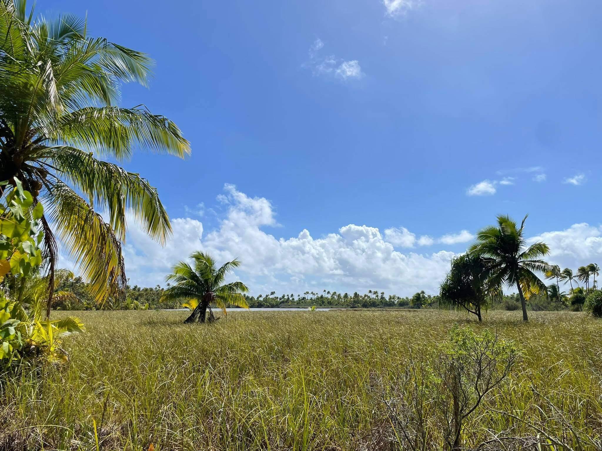 http://tahitivoileetlagon.com/wp-content/uploads/2021/07/grand-motu-TETIAROA.jpg