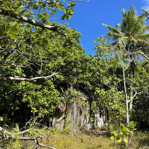 http://tahitivoileetlagon.com/wp-content/uploads/2021/07/vieux-village-TETIAROA-e1626606071553.jpg